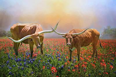 Texas Longhorns In Spring Wildflowers Poster by Lynn Bauer