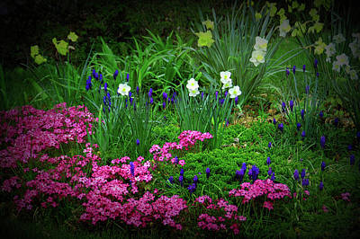 Poster featuring the photograph Texture Drama Garden Escape by Aimee L Maher Photography and Art Visit ALMGallerydotcom