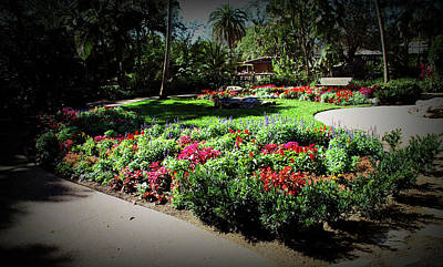 Poster featuring the photograph Texture Drama Garden Park by Aimee L Maher Photography and Art Visit ALMGallerydotcom