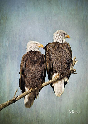 Textured Eagles Poster by Jeff Swanson