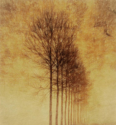Poster featuring the mixed media Textured Eerie Trees by Dan Sproul