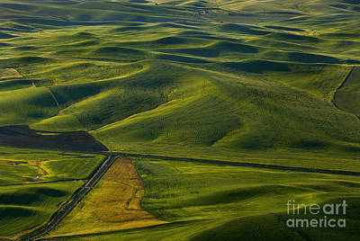 Textures Of The Palouse Poster by Mike Dawson