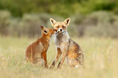 Thank God It's Friday - Fox Love Poster