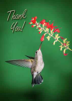 Thank You - Looking Up Poster