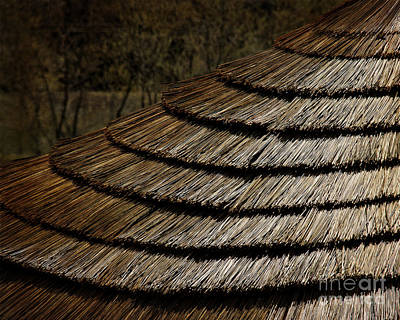 Thatch Roof  Poster by Tom Gari Gallery-Three-Photography