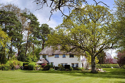 thatched cottage in the New Forest Poster