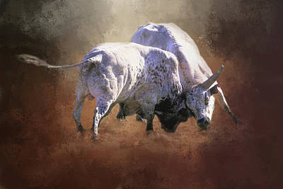 Poster featuring the photograph That's A Lot Of Bull by Donna Kennedy