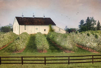 The Apple Orchard Poster by Lori Deiter