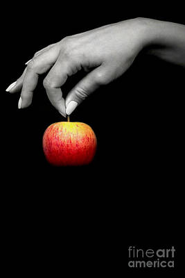 The Apple Poster by Svetlana Sewell