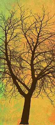 The Autumn Tree Triptych 2 Of 3 Poster by Ken Figurski