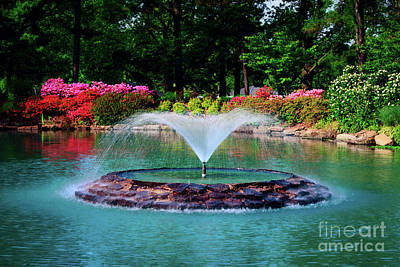 The Azalea Pond At Honor Heights Park Poster by Tamyra Ayles