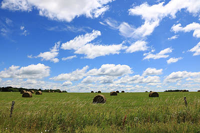 Poster featuring the photograph The Bales Of Summer 3 by Rick Morgan