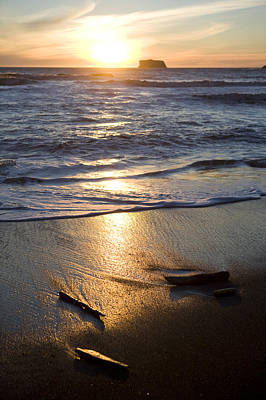 The Beach At Sunset In Olympic National Poster by Taylor S. Kennedy