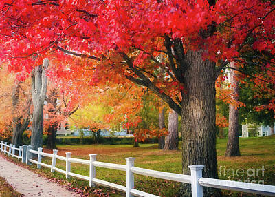 The Beauty Of Autumn In New England Poster