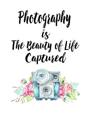 The Beauty Of Life Poster by Colleen Taylor