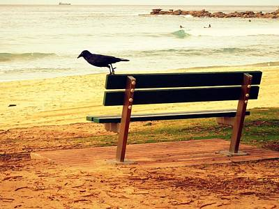 The Bench And The Blackbird Poster
