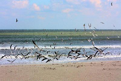 The Birds Poster by Kristin Elmquist