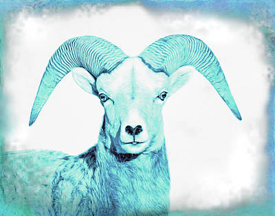 Poster featuring the photograph The Blue Ram by Jennie Marie Schell