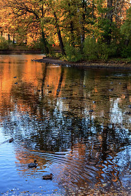 The Bright Colors Of Autumn, Quiet Evenings Are Reflected In The Waters Of The City Pond Poster