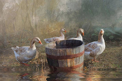 Poster featuring the photograph The Bucket Brigade by Robin-Lee Vieira