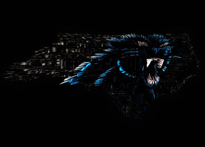 The Carolina Panthers 1e Poster