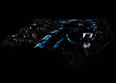 The Carolina Panthers 1f Poster