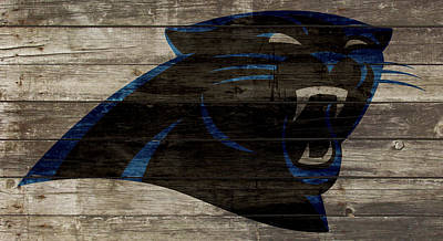 The Carolina Panthers 2w Poster by Brian Reaves