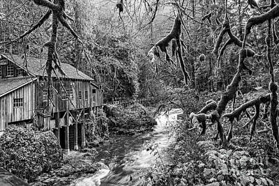 The Cedar Creek Mill Moss Poster by Jamie Pham