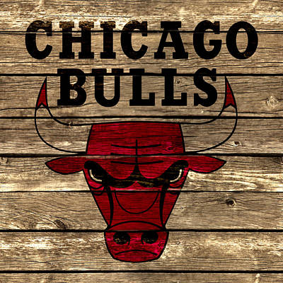 The Chicago Bulls 2a Poster