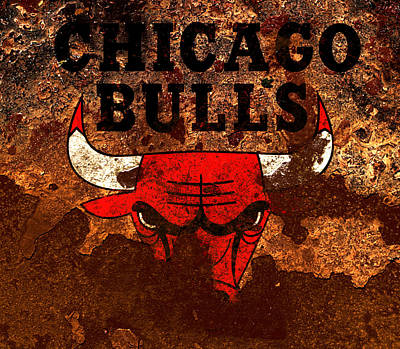 The Chicago Bulls R3 Poster