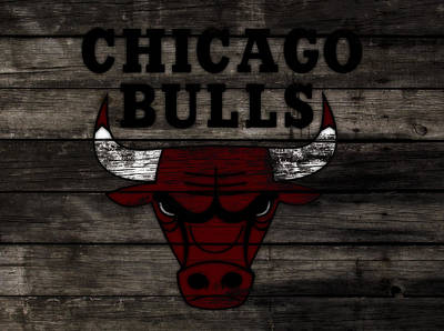 The Chicago Bulls W11 Poster by Brian Reaves