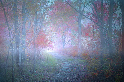 The Colours Hidden By An October Fog Poster