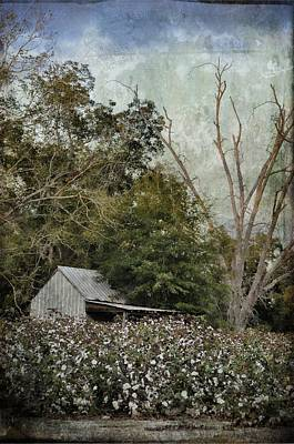 The Cotton Shed Poster by Jan Amiss Photography