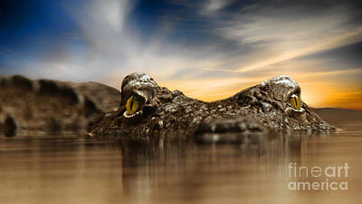 Poster featuring the photograph The Crocodile by Christine Sponchia
