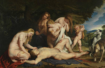The Death Of Adonis Poster by Peter Paul Rubens
