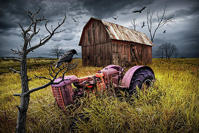 Poster featuring the photograph The Decline And Death Of The Small Farm by Randall Nyhof