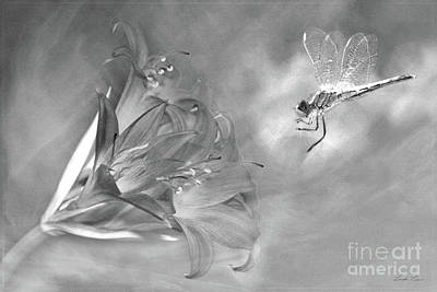 The Dragonfly And The Flower Poster by Linda Lees