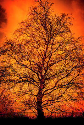 The Fable Known As Hell Poster by Jorgo Photography - Wall Art Gallery