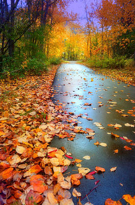 The Fallen Leaves Of Autumn Poster by Tara Turner