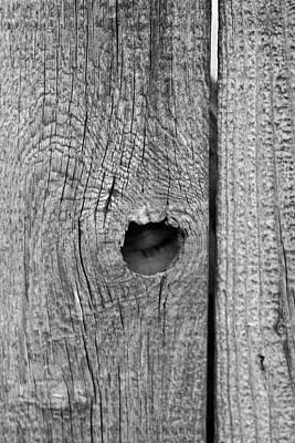 The Fence That Sleeps Poster by Douglas Barnett