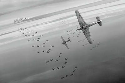 Poster featuring the photograph The Few Bw Version by Gary Eason