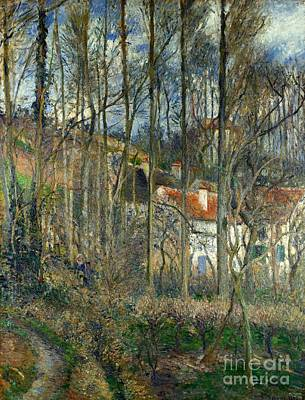 The Forest At The Hermitage Poster