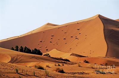 The Great Merzouga Dune Poster by Sami Sarkis