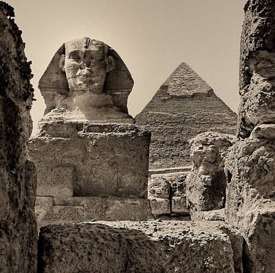 The Great Sphinx And Pyramid Of Khafre Poster by Nigel Fletcher-Jones