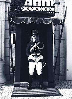 Poster featuring the photograph The Guard At The Palace by Lorraine Devon Wilke