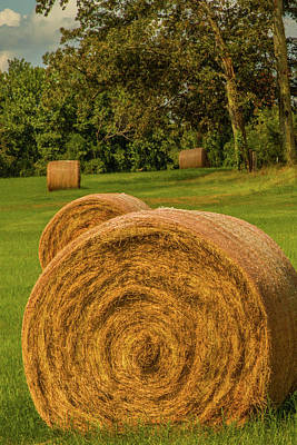 Poster featuring the photograph The Hay Bales by Barry Jones