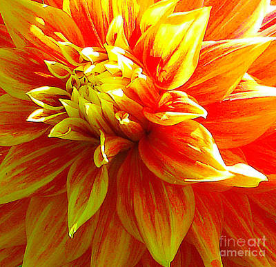 The Heart Of A Dahlia #2 Poster