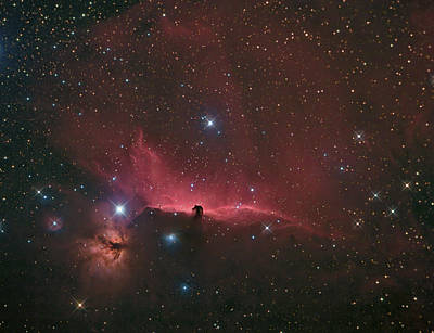 Poster featuring the photograph The Horsehead Nebula by Charles Warren