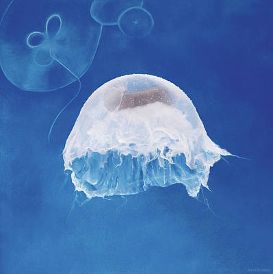 The Jellyfish Nursery Poster by Anne Geddes