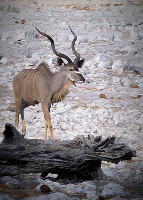 Poster featuring the digital art The Kudu In Namibia by Ernie Echols
